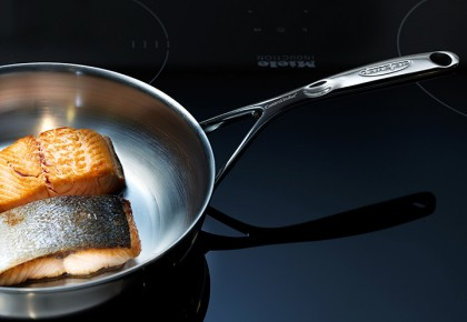 Demeyere controlinduc frying pans