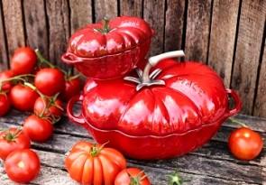 STAUB Tomaten Cocotte
