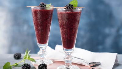zw-enfinigy-blackberry-bourbon-margarita_736x415px