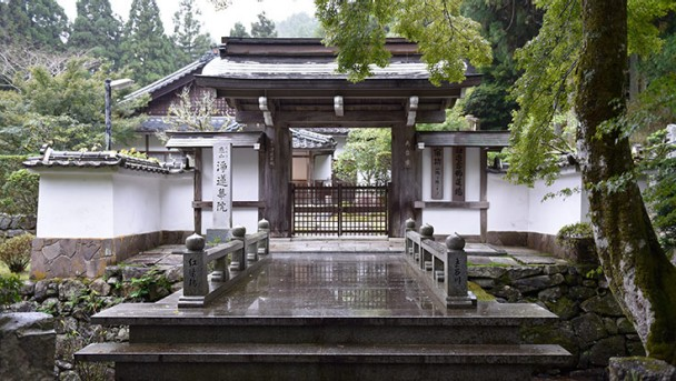 CW_Japan_travel_Jorengein_01_736x415