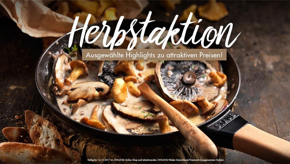staub_aktion_hebstaktion_desktop