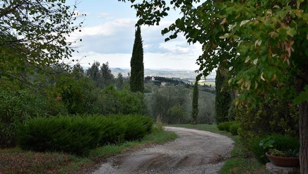 CW_Italy_Culinary_Tip_Sono_Montendioli_Wine_Estate_6_736x415