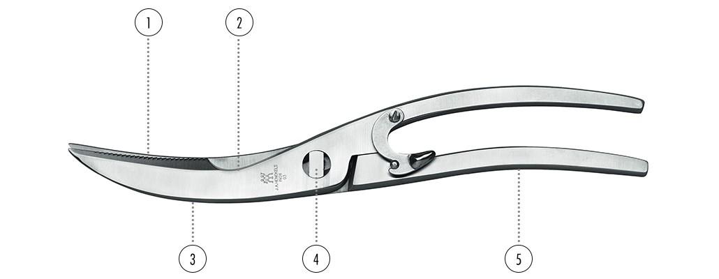 Ciseaux - ZWILLING ciseaux à volaille détails